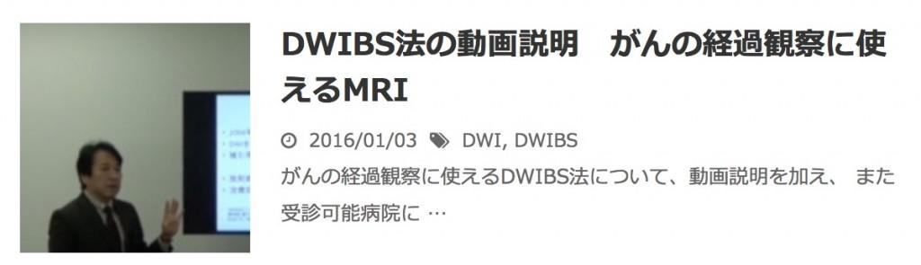 BN DWIBS法